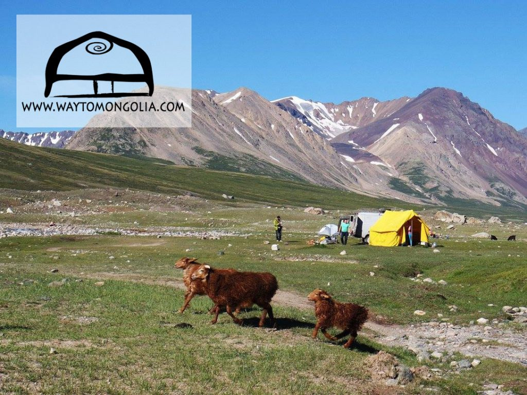 The best time to visit Mongolia