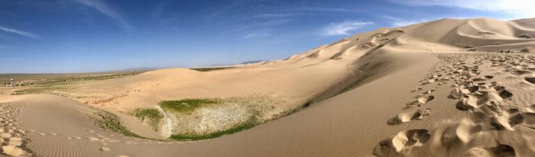 Khongoriin Els ( Sand Dune) or Khongor sand dune