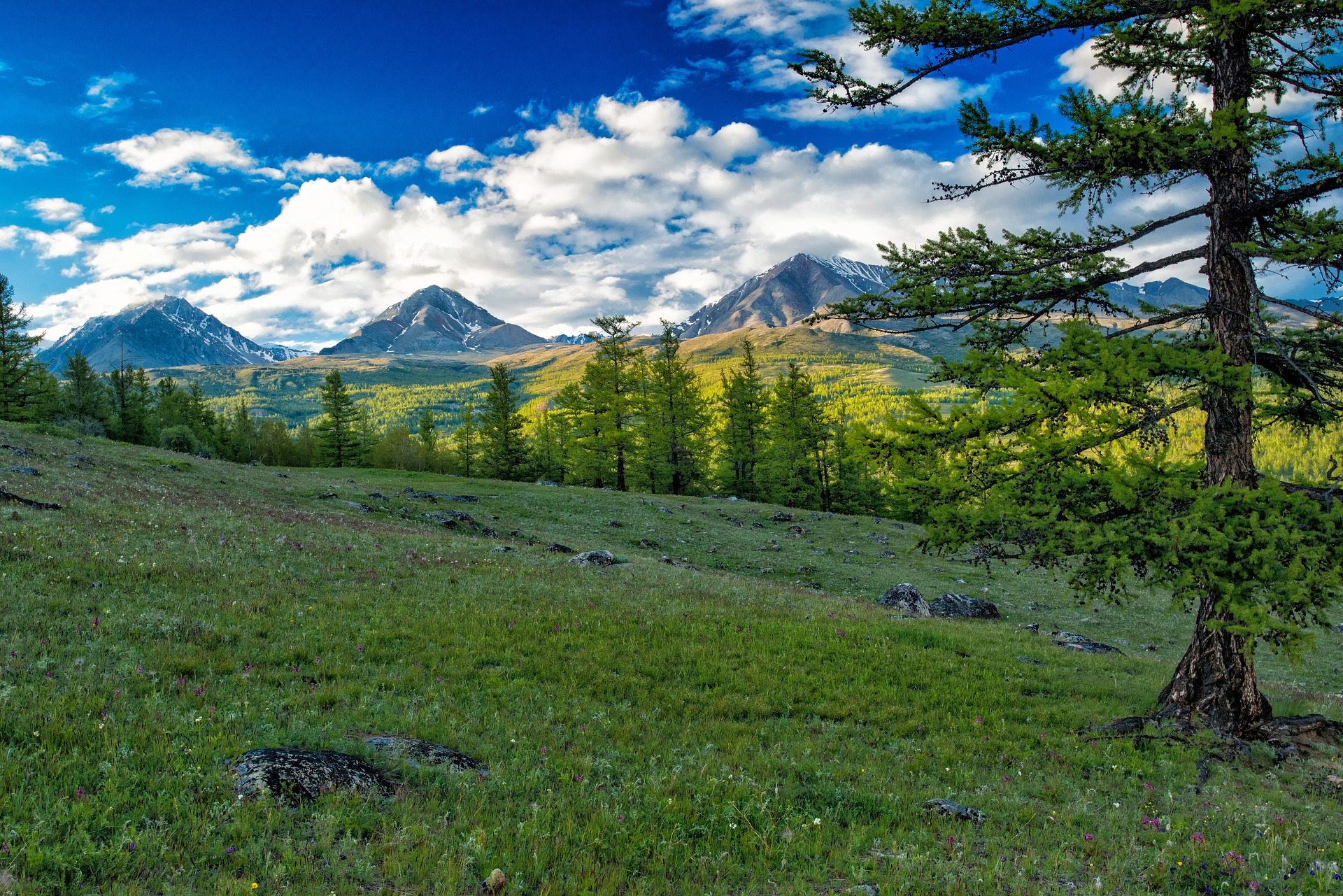 Top places to visit in Mongolia